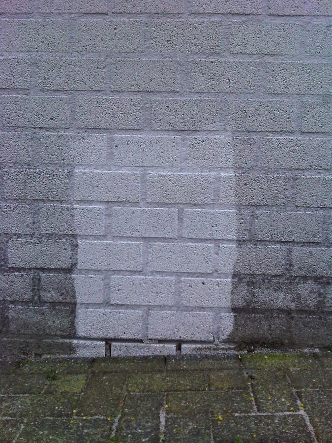cleanwall-blackberry-086